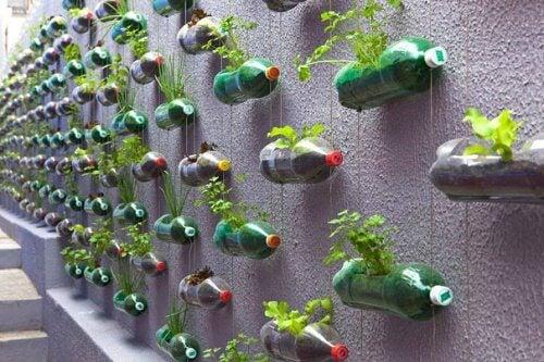 Plastikflaschen recyceln - vertikaler Garten