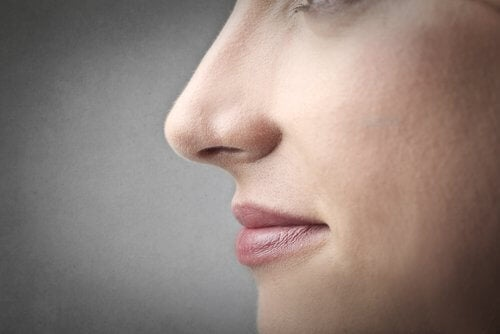 Das Fokussieren der Nasenspitze hilft gegen Müdigkeit der Augen.