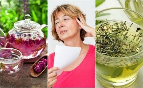 6 Naturmittel gegen Hitzewallungen in den Wechseljahren