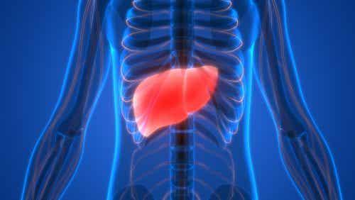 Symptome einer Leberzirrhose