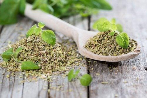Tees gegen Bluthochdruck: Oregano-Tee