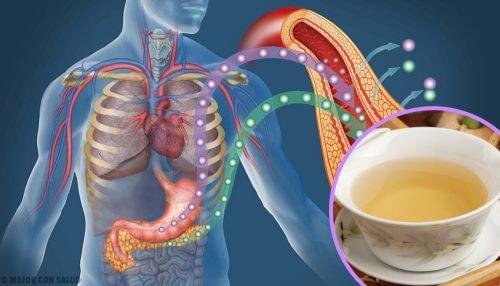 4 Tees zur Senkung des Blutzuckers