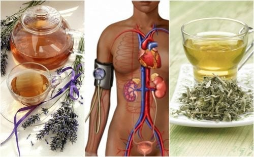 5 Tees gegen Bluthochdruck