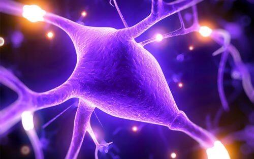 Vorteile von Magnesium zur Verbesserung der Hirnkapazitäten