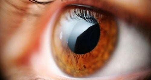5 Anzeichen für Krankheiten, die an den Augen abzulesen sind