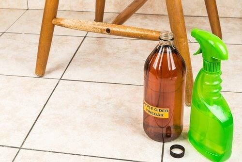 Apfelessig und Zitrone gegen schlecht riechende Wäsche