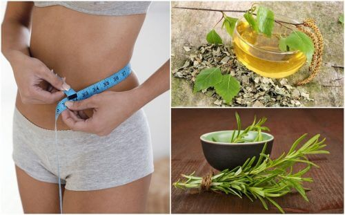 8 Heilpflanzen zur Gewichtsreduktion