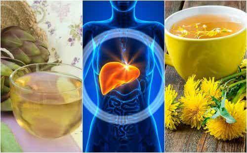 5 pflanzliche Heilmittel gegen Fettleber