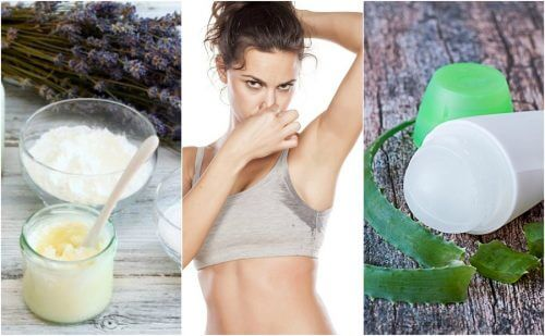 5 selbstgemachte Deodorants