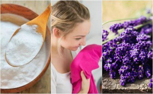 5 Tipps gegen schlecht riechende Wäsche