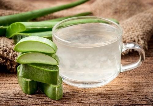 Aloe Vera Blätter - 6 fabelhafte Hausmittel