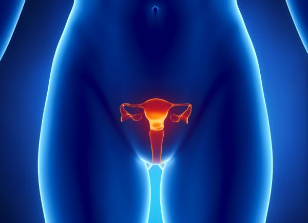 Nebenwirkungen und Symptome von Eierstockkrebs
