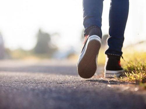 Gründe warum Spaziergänge so gesund sind