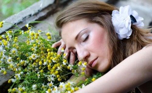 Wohnen mit Pflanzen bringt Ruhe