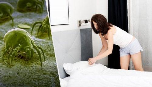 Betten lüften gegen Hausstaubmilben