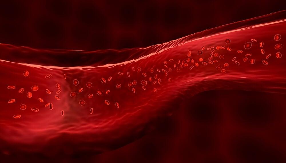 Getränke, die den Blutdruck erhöhen - Besser Gesund Leben