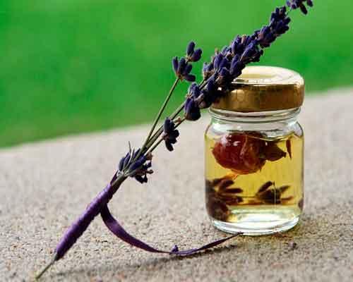 Ätherisches Lavendelöl gegen Kopfschmerzen