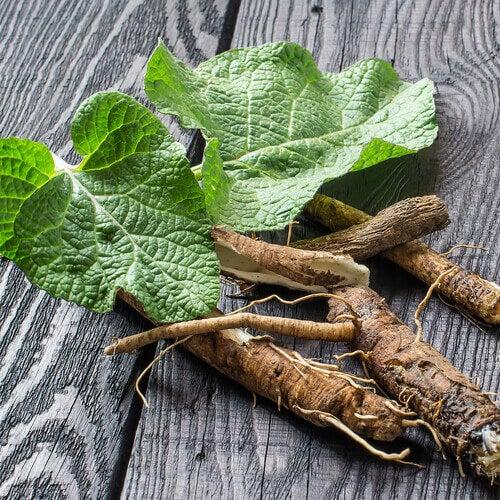 Stärkung der Lunge mit Süßholzwurzel