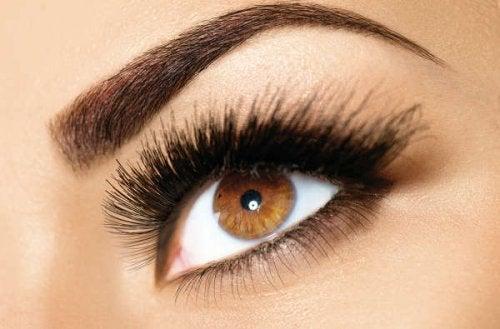 Verwendungsmöglichkeiten von Vaseline für Wimpern und Augenbrauen