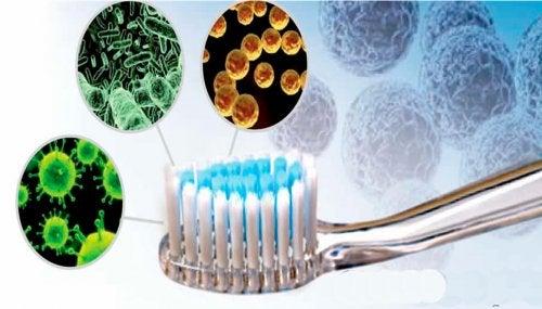 entzündetes Zahnfleisch durch falsche Mundhygiene
