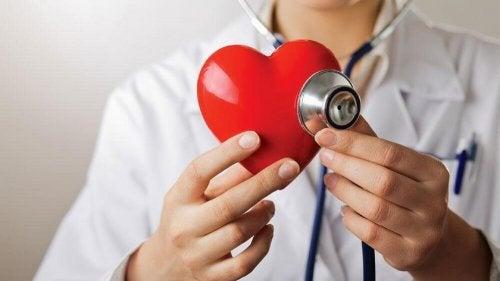 Grüner Apfel schützt die Herz-Gefäß-Gesundheit