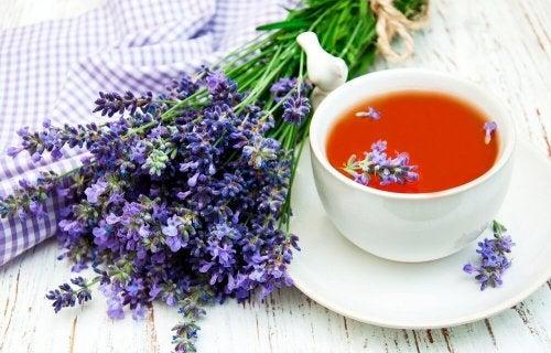Die besten natürlichen Schlafmittel: Lavendeltee