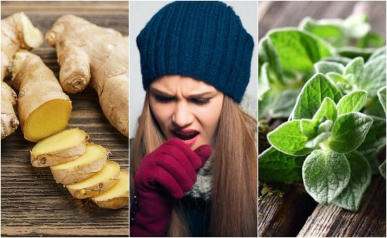 5 Hausmittel aus schleimlösenden Pflanzen