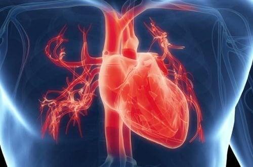 Gebrochenes-Herz-Syndrom - 5 Dinge die du noch nicht wusstest - kurzzeitige Krankheit
