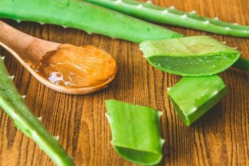 Peeling-Masken mit Gelatine und Aloe Vera