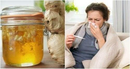 Bekämpfe Erkältungen mit selbstgemachtem Honig-Ingwer-Sirup