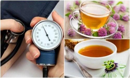 Den Blutdruck senken mit diesen 6 Kräutern