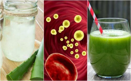 5 medizinische Getränke, die deinen Blutkreislauf reinigen