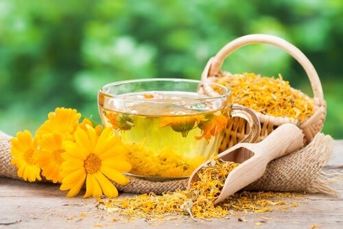 Calendula Tee als Heilmittel für bakterielle Vaginose.