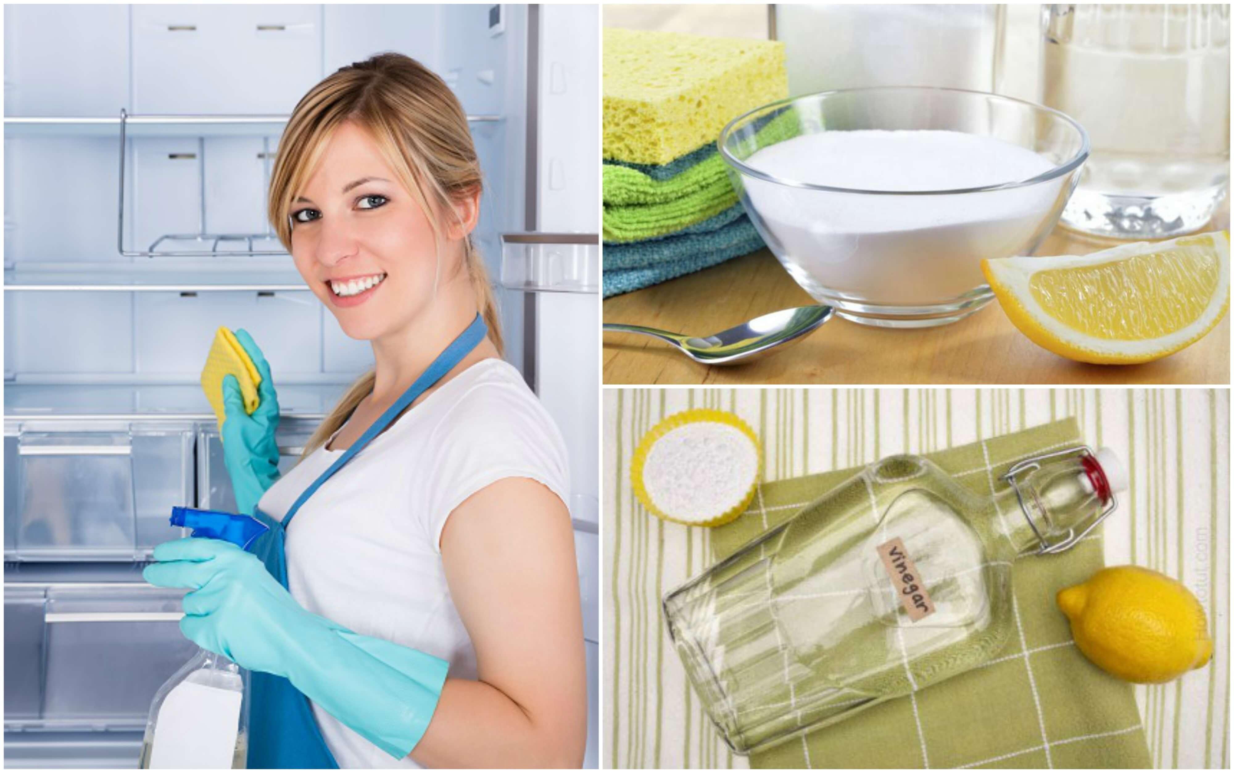 Reinigung und Desinfektion des Kühlschranks mit 5 Hausmitteln