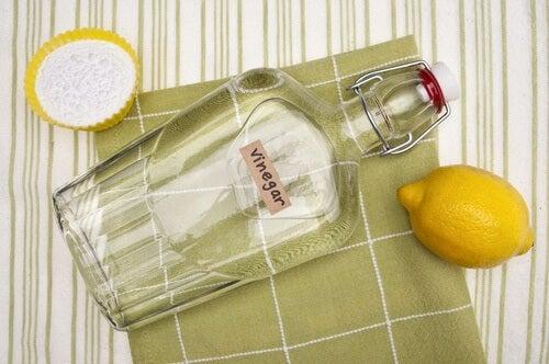Desinfektion des Kühlschranks mit Essig und Zitrone