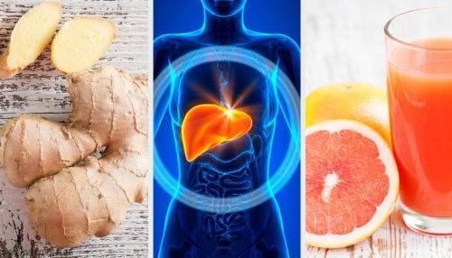 Richtige Ernährung Bei Fettleber