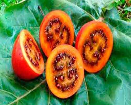 4 seltsame und exotische Obst- und Gemüsesorten, die nur wenige kennen