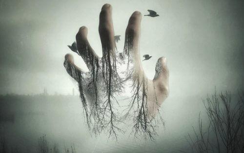 Hand lässt Vögel frei als Liebesbeweis