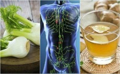 6 Heilmittel, die dein Lymphsystem reinigen.