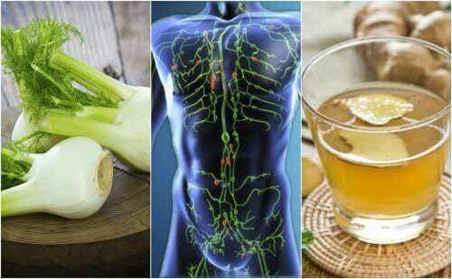 Diese 6 natürliche Tees sind gut für das Lymphsystem