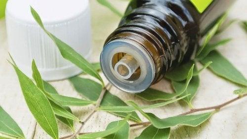Teebaumöl ist ein natürliches Heilmittel für bakterielle Vaginose.