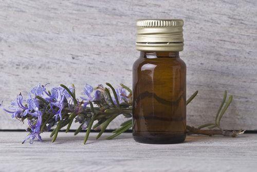 Unangenehme Krämpfe mit Rosmarinöl behandeln