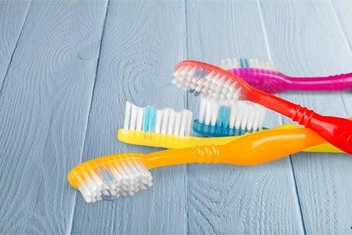 Krankheitserreger in Zahnbürsten