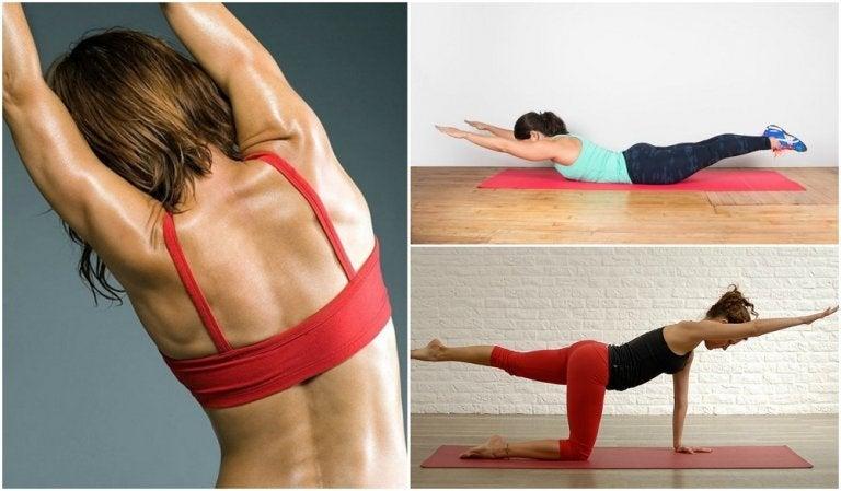5 Übungen für einen starken Rücken