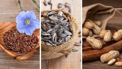 5 essbare Samen und ihre Eigenschaften