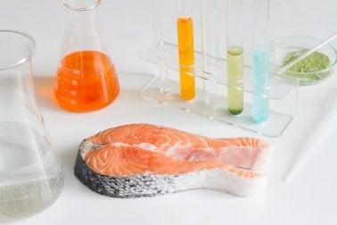 6 Fischarten, die du lieber nicht essen solltest