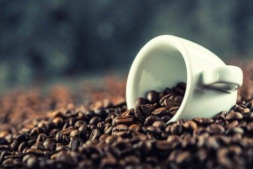 Was eine kleine Tasse Kaffe kann - Wissenswertes über Kaffee.