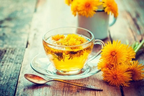 Löwenzahntee und andere Tees zum Entwässern