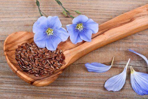 Leinsamen sind essbare Samen