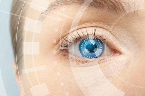 Kollagen für gesunde Augen